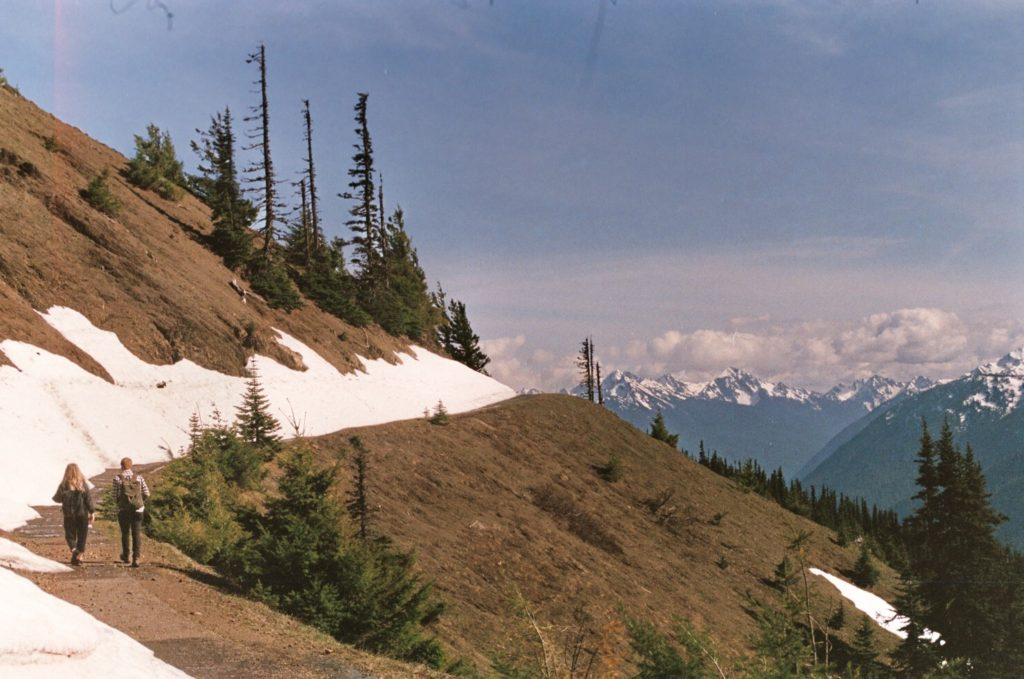 Hurricane Hill Snowy Pathway Olympic Mountains