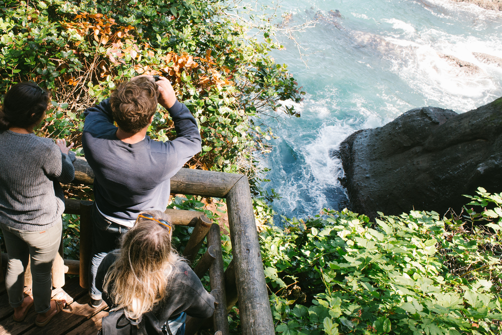 Lookout point Cape Flattery Washington State